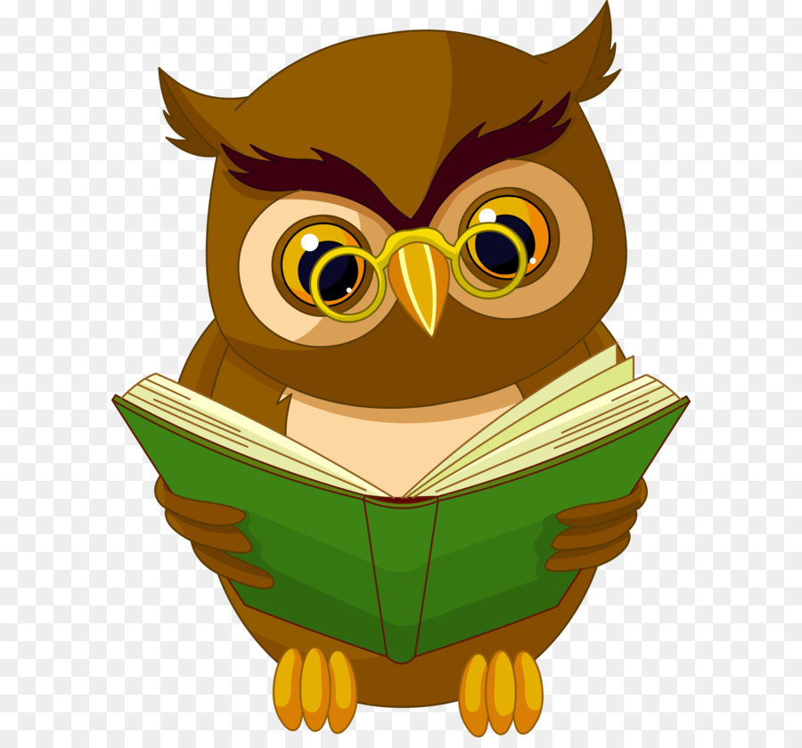 Owl cartoon drawing animation. Book clipart animated