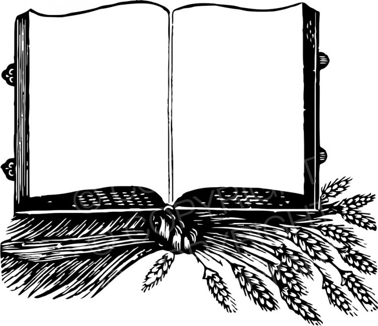 An open book with. Books clipart vintage