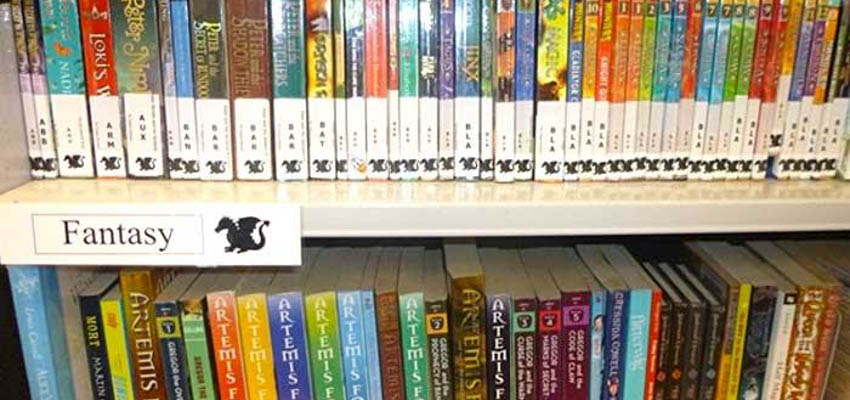 Arranging library fiction by. Bookshelf clipart genre