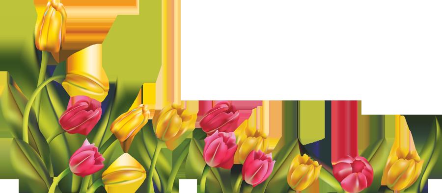 Spring border png. Wonderful decoration clip art