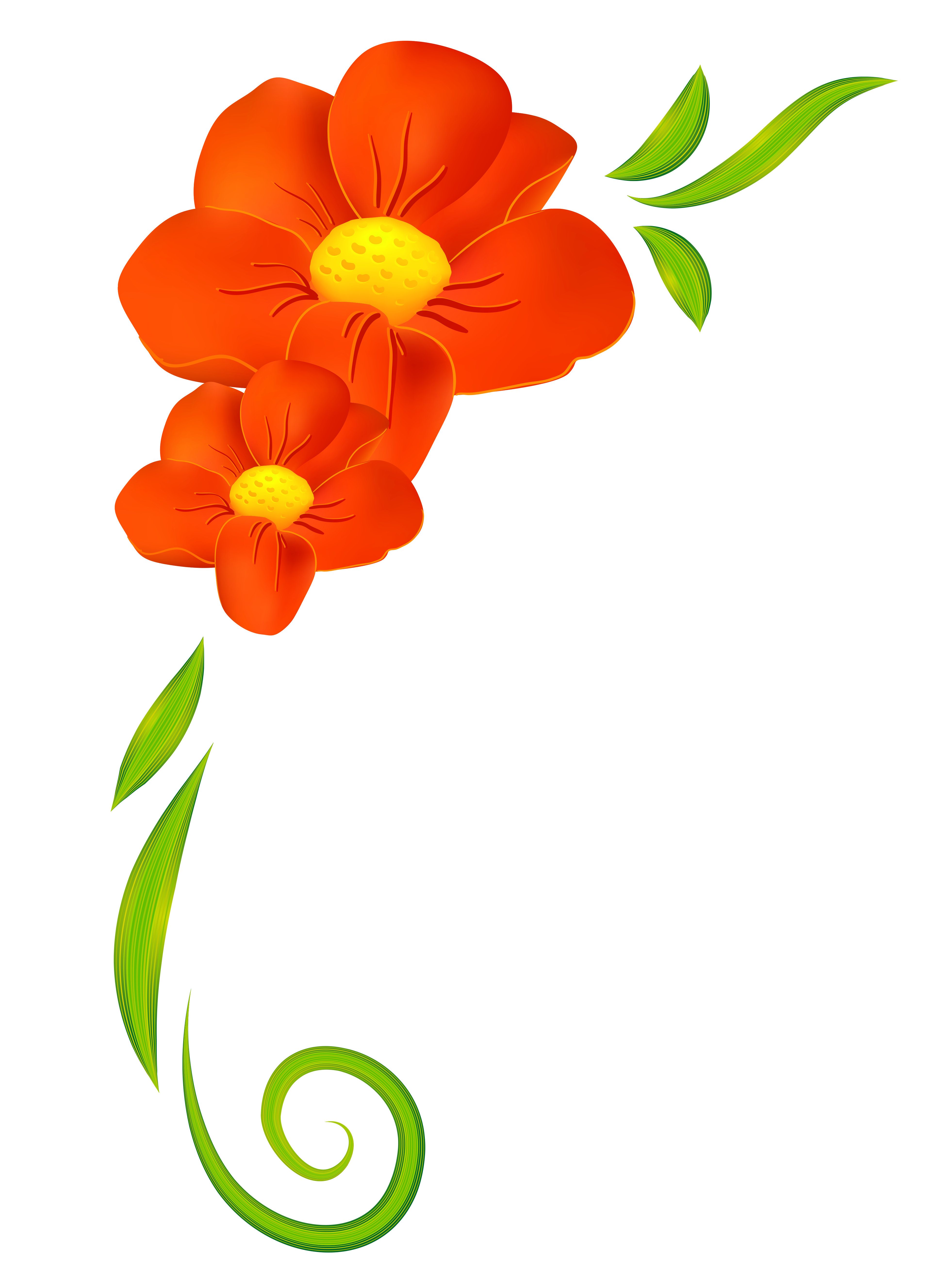 Poppy clipart one. Image result for spring