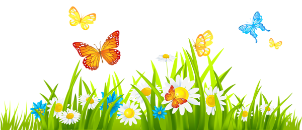 Png buscar con google. Boarder clipart spring