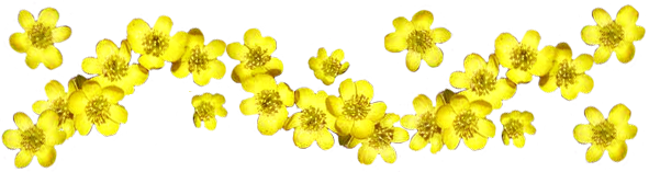 Flower images decoration ideas. Border clip art spring