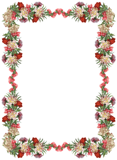 Floral border png. Download flowers borders free