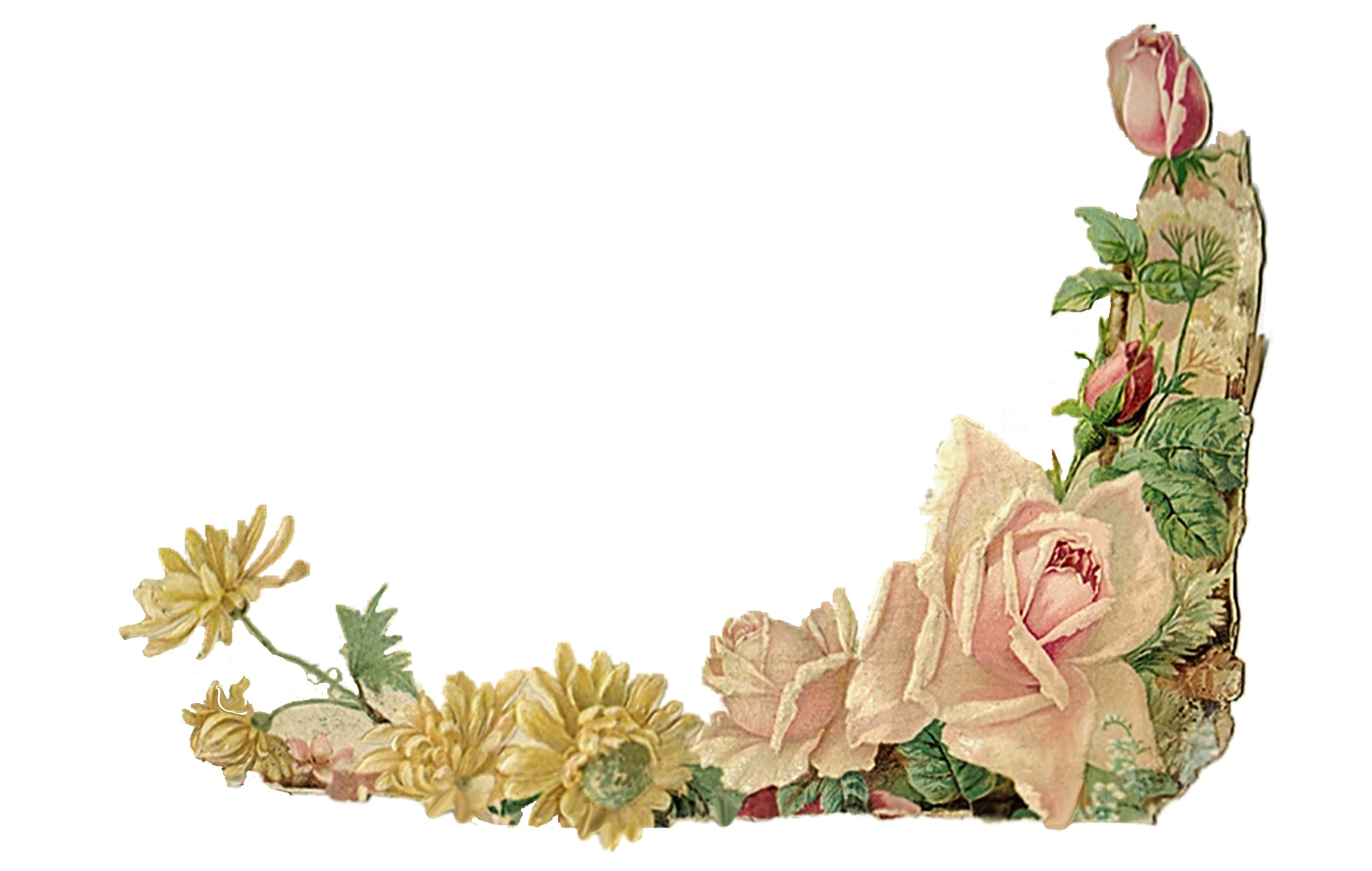 Search results floral corner. Border clipart vintage flower