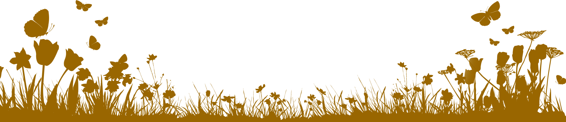 borders for free. Border design png