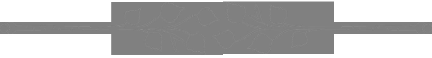 Border lines png. Leafysaur on toyhouse borderlinespng