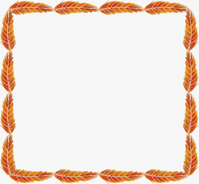 Orange square vector png. Borders clipart feather