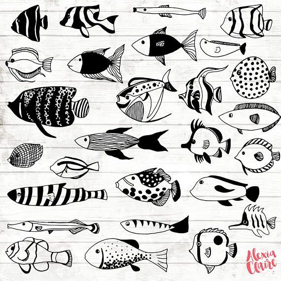 Tropical fish hand drawn. Boulder clipart ocean