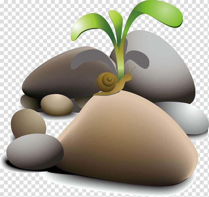 Boulder clipart pebble. Rock snail and nature