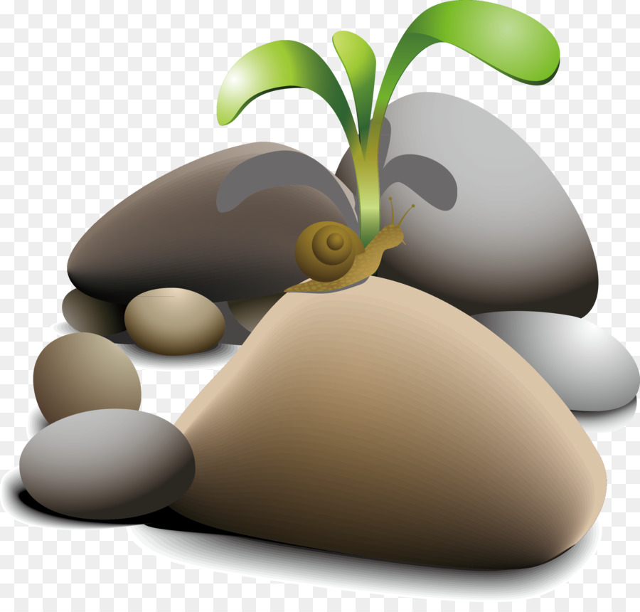 Rock Boulder Pebble Clip art - Snail and nature png download - 2493 ...