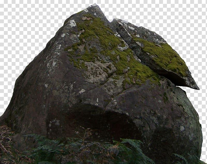 Boulder clipart space rock. Jungle transparent background png