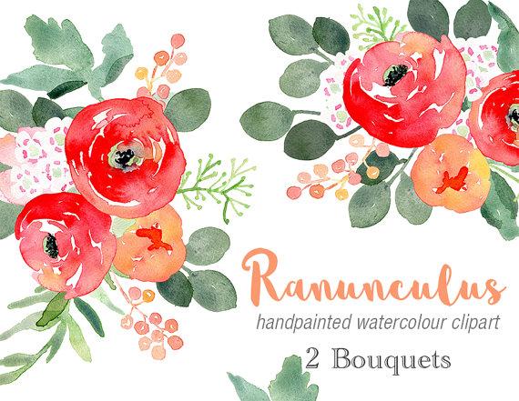 Watercolour clip art ranunculus. Bouquet clipart christmas