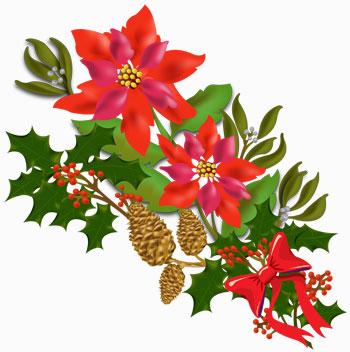 Bouquet clipart christmas. Free flowers download clip