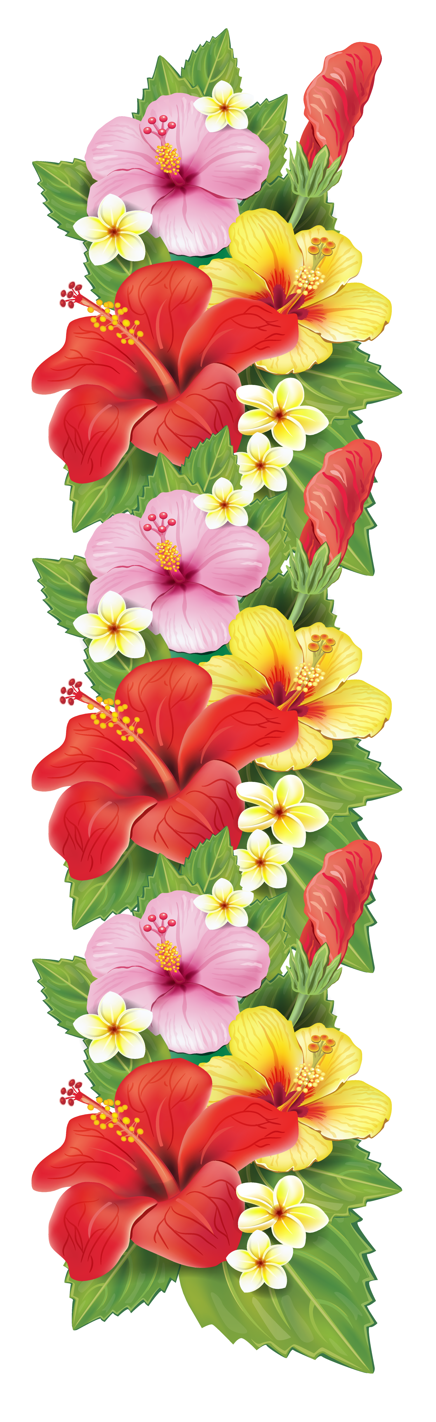 Exotic flowers decoration png. Hibiscus clipart green hibiscus flower