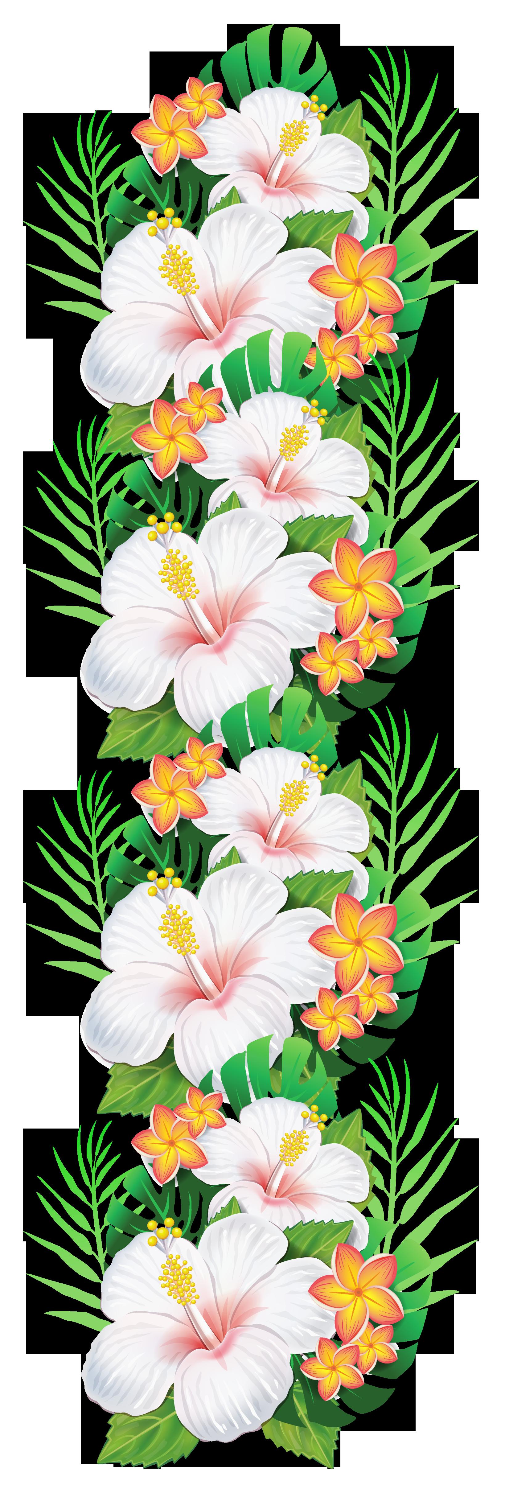 White exotic flowers png. Bouquet clipart decoration
