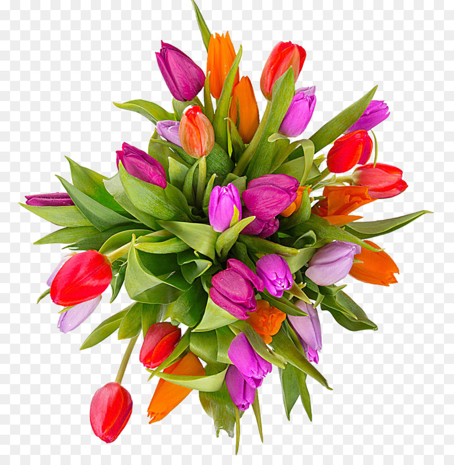 Tulip flower clip art. Bouquet clipart easter