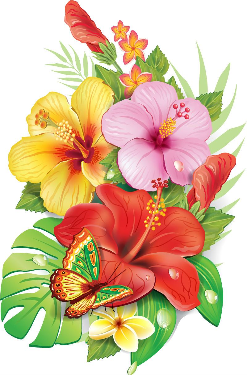 Thursday resource how to. Bouquet clipart hibiscus