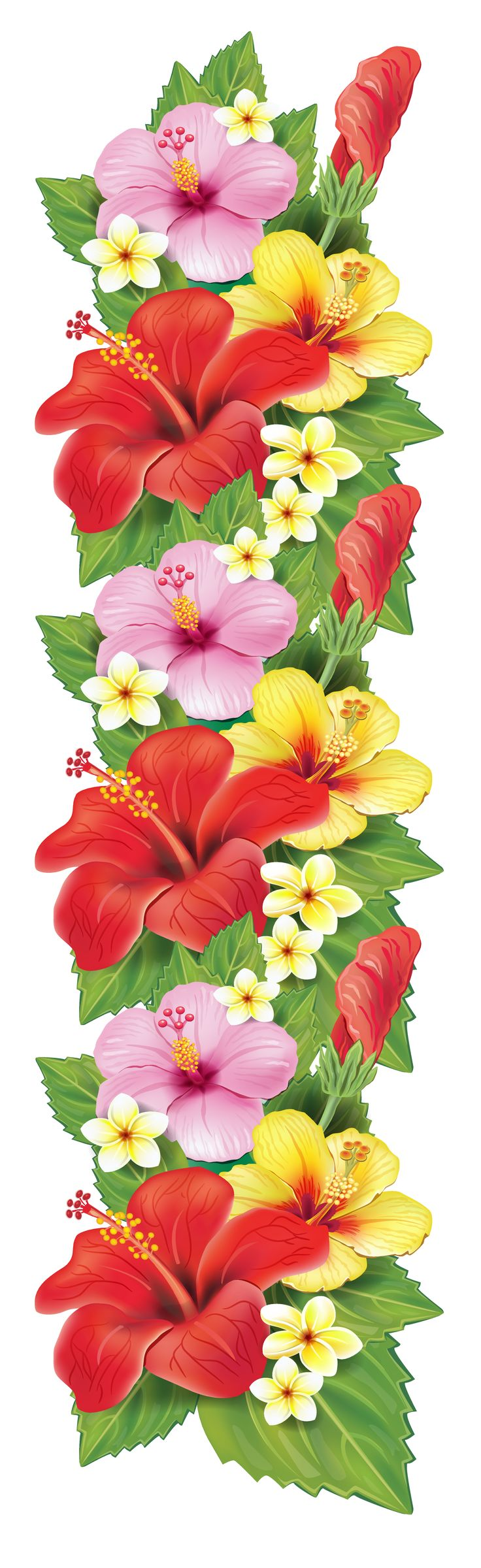 best images on. Bouquet clipart hibiscus