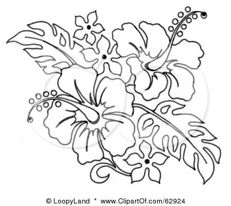 Bouquet clipart hibiscus. Royalty free rf illustration