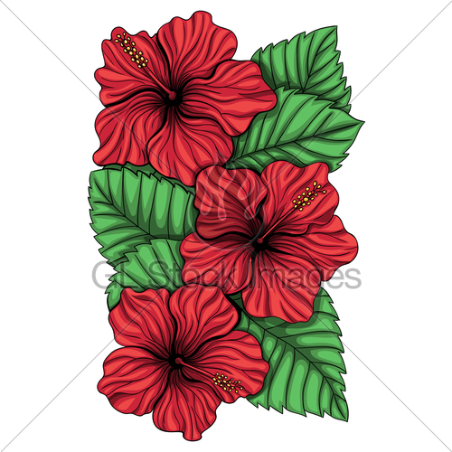 Bouquet clipart hibiscus. Of flower and tropical