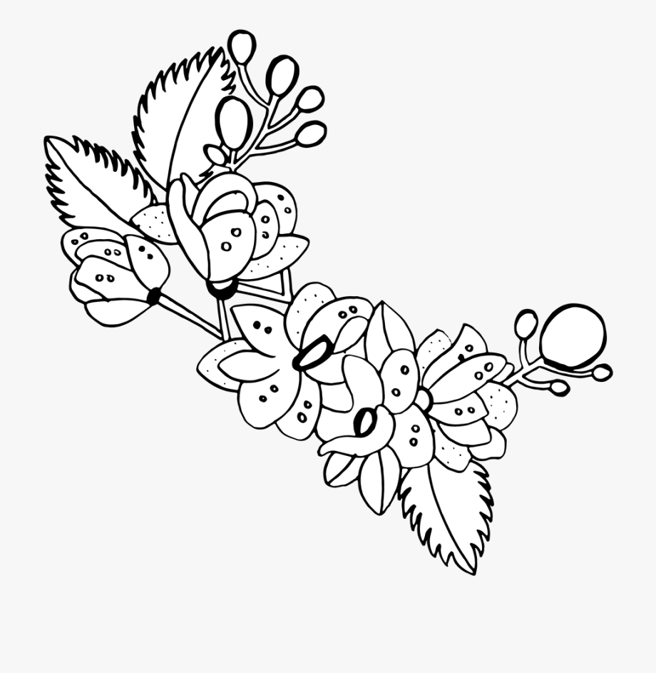 Bouquet clipart line art. Free png hand drawn