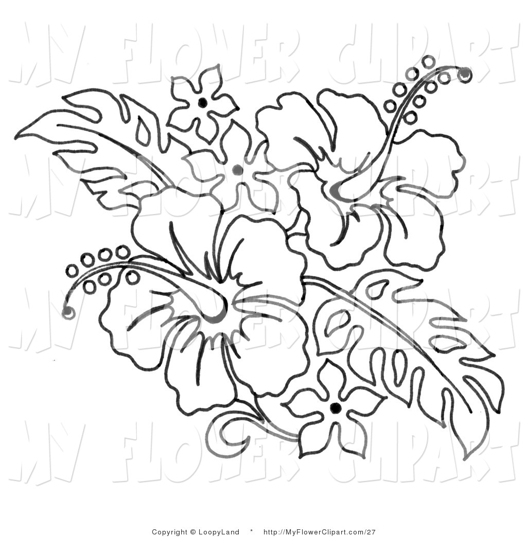 Bouquet Of Flowers Line Drawing at GetDrawings