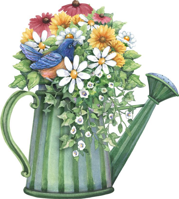 Watering can adventure pinterest. Bouquet clipart spring