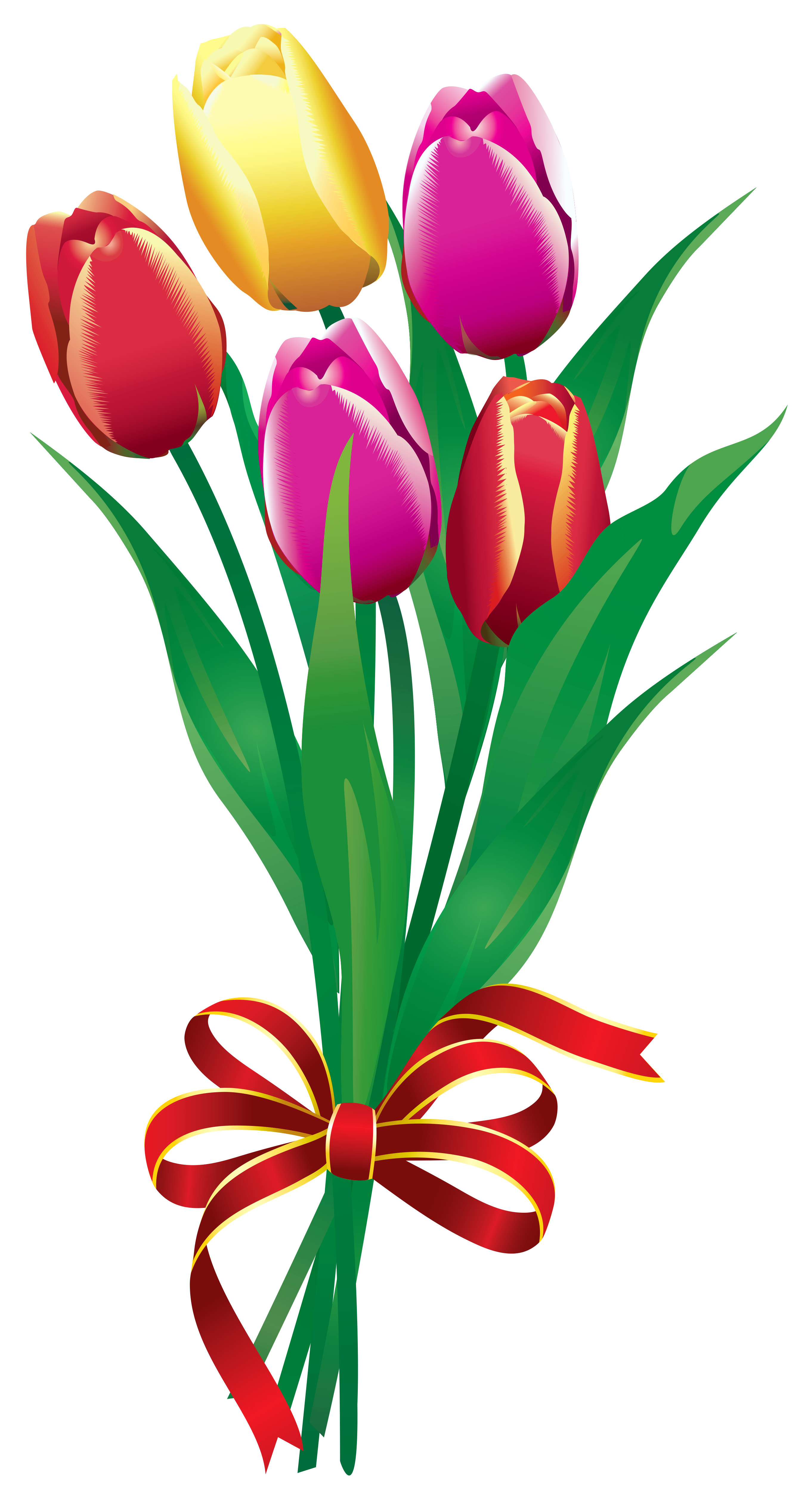 Spring tulips bouquet png. Clipart leaves tulip