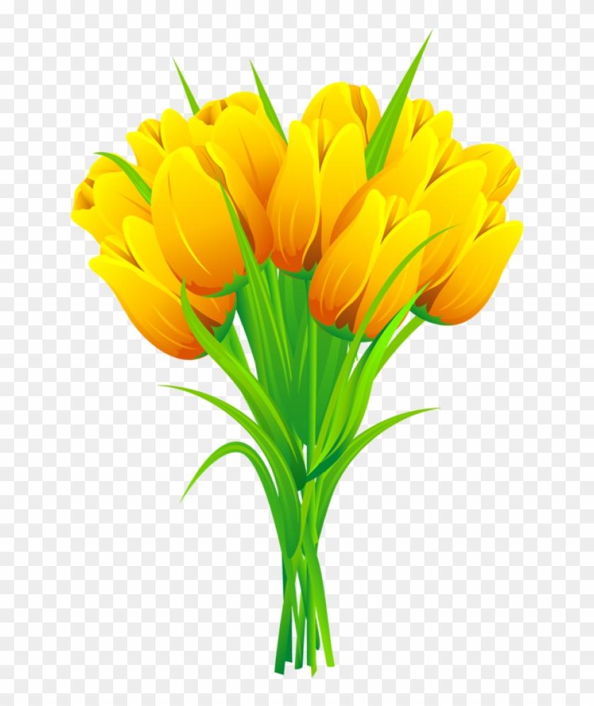 Bouquet clipart spring flower bouquet. Tulip free png transparent