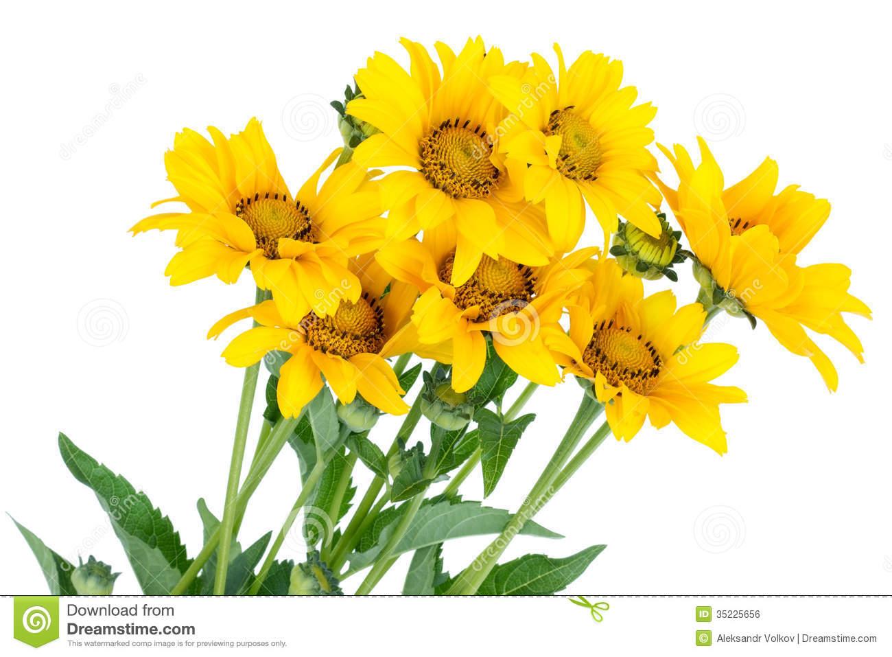 . Bouquet clipart sunflower bouquet
