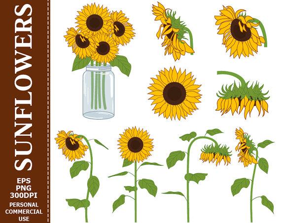 Digital sunflowers clip art. Bouquet clipart sunflower bouquet