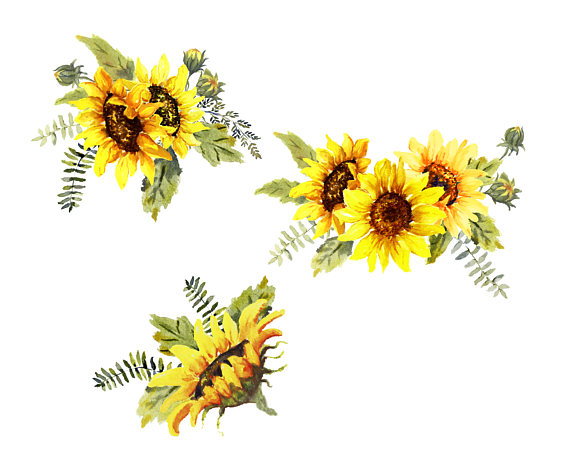 Pin by etsy on. Bouquet clipart sunflower bouquet