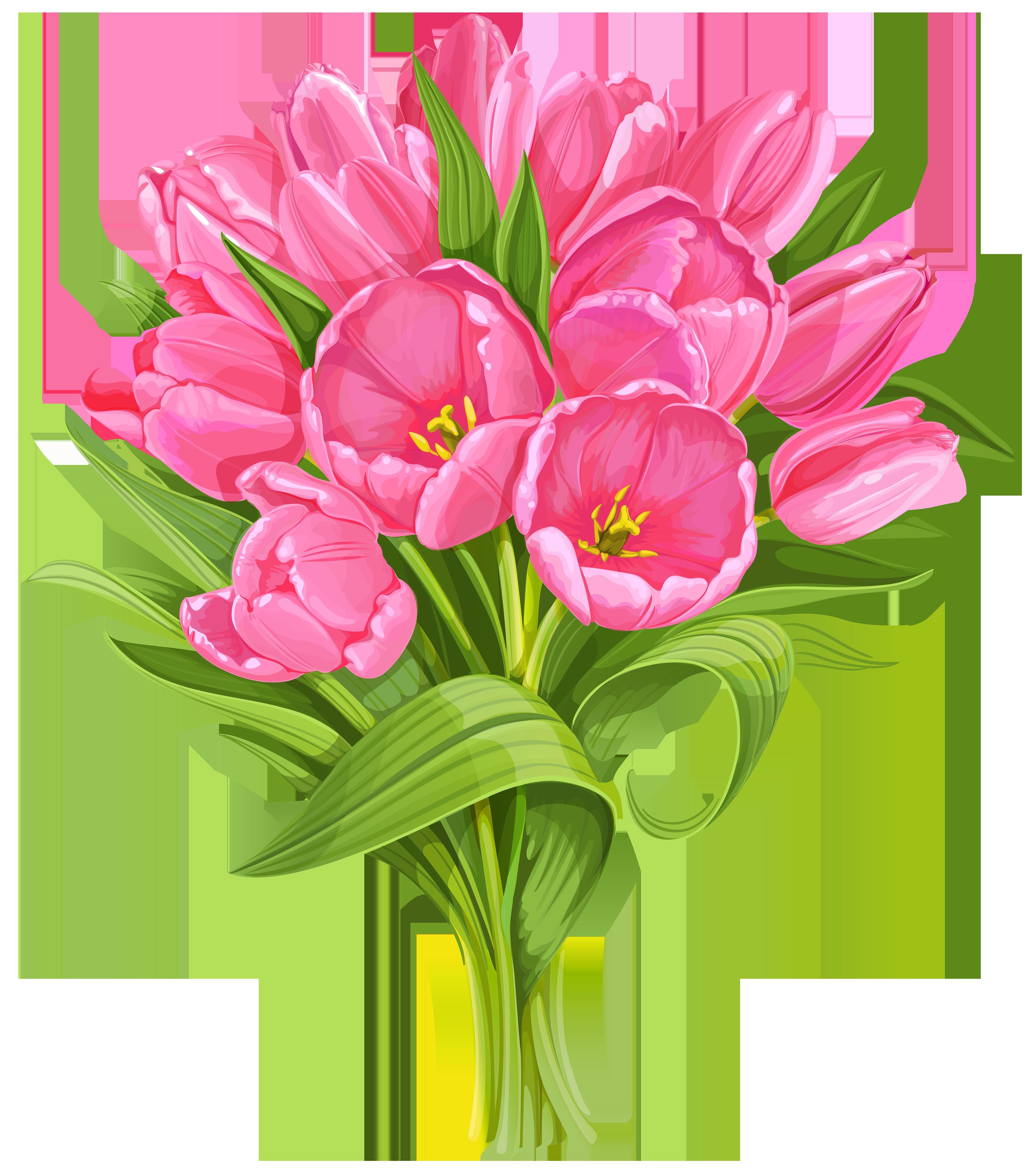 Tulips png clip art. Bouquet clipart transparent background