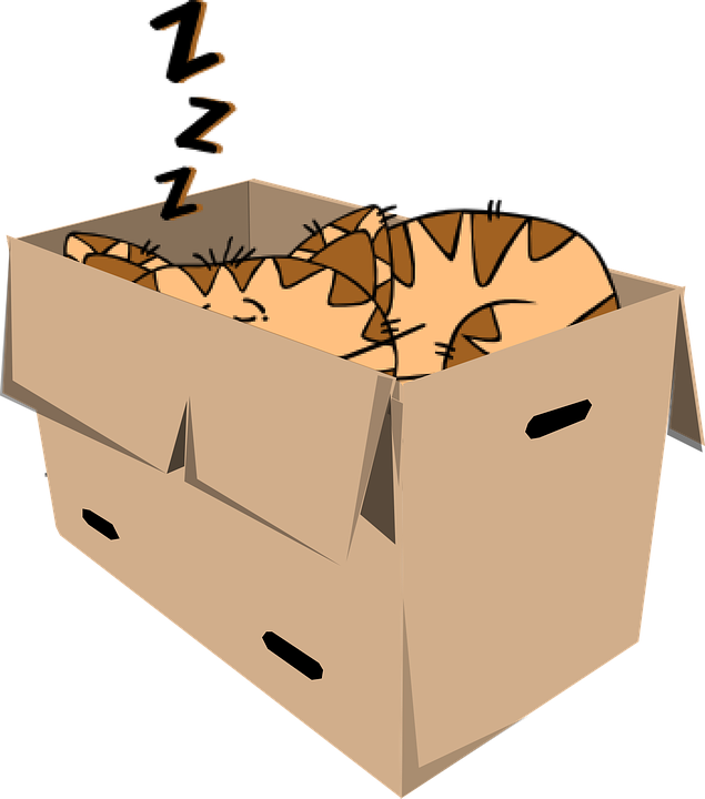 Box clipart cartoon. Cat free collection download