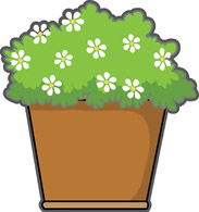 Parts of a plant. Box clipart flower
