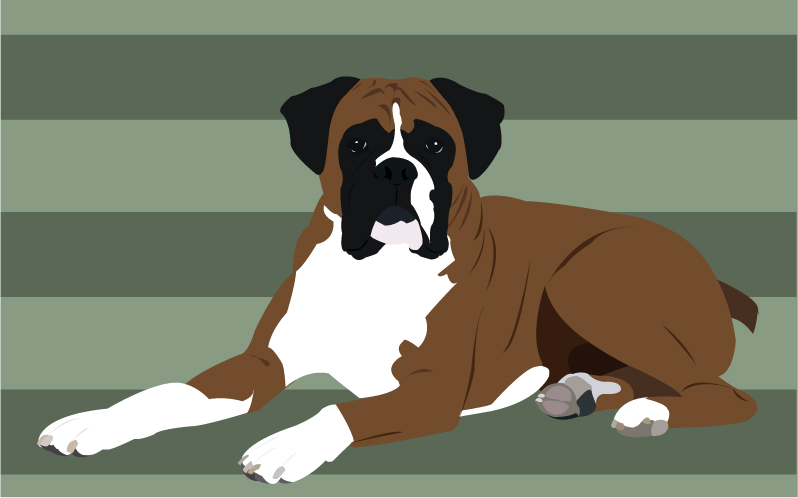 Free images at clker. Boxer clipart boxer dog