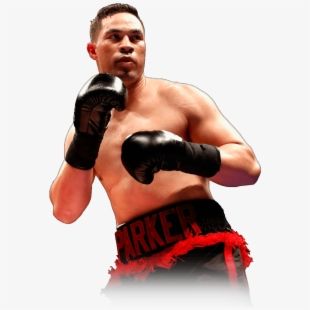 Fighter boxing . Boxer clipart professional boxer