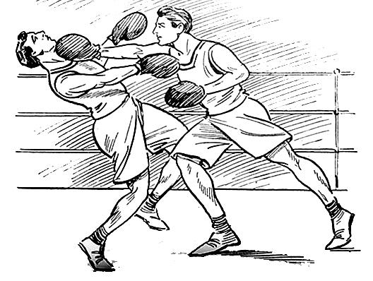 Boxing panda free images. Boxer clipart wanton