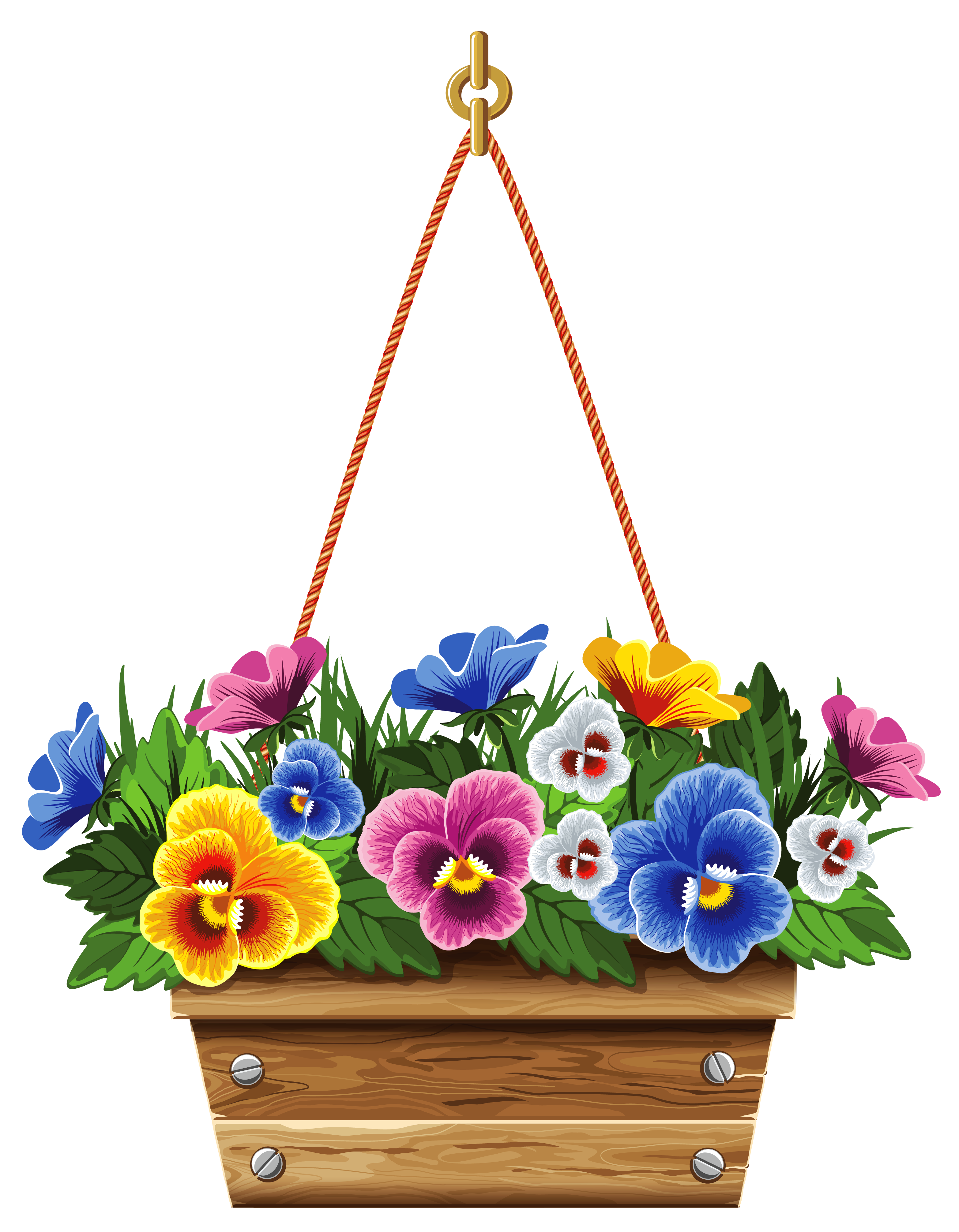 Hanging box with violets. Boxes clipart flower