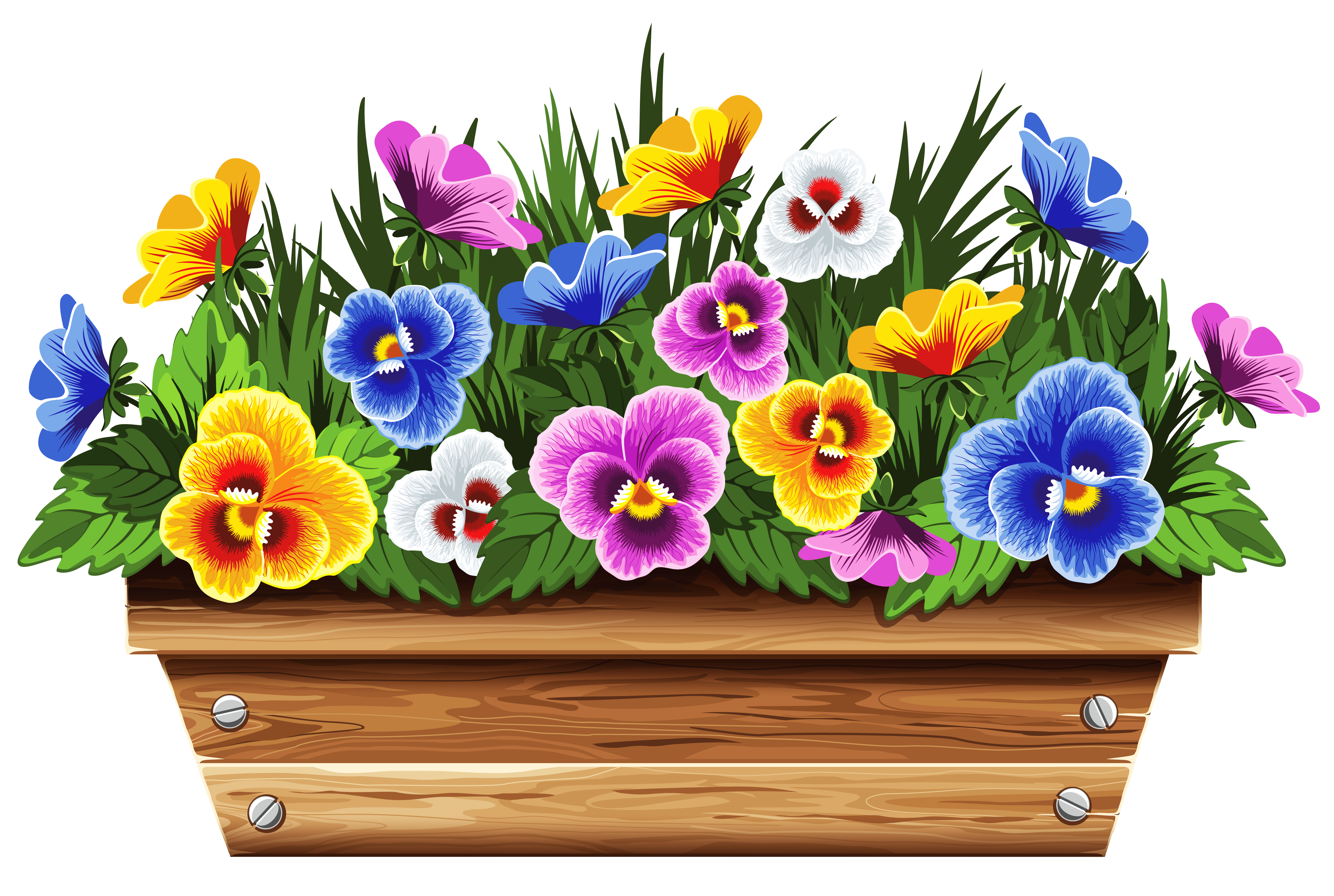Flower box png. With violets clipart picture