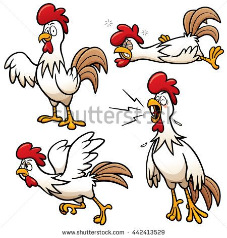 Boxing clipart chicken.  best images on