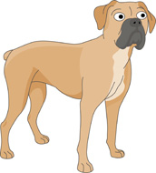 Boxer clipart boxer dog. Search results for clip
