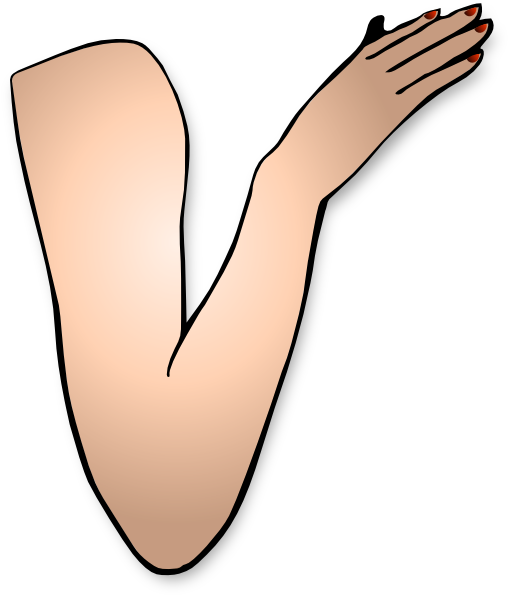 Bra clipart arm hand. And clip art at