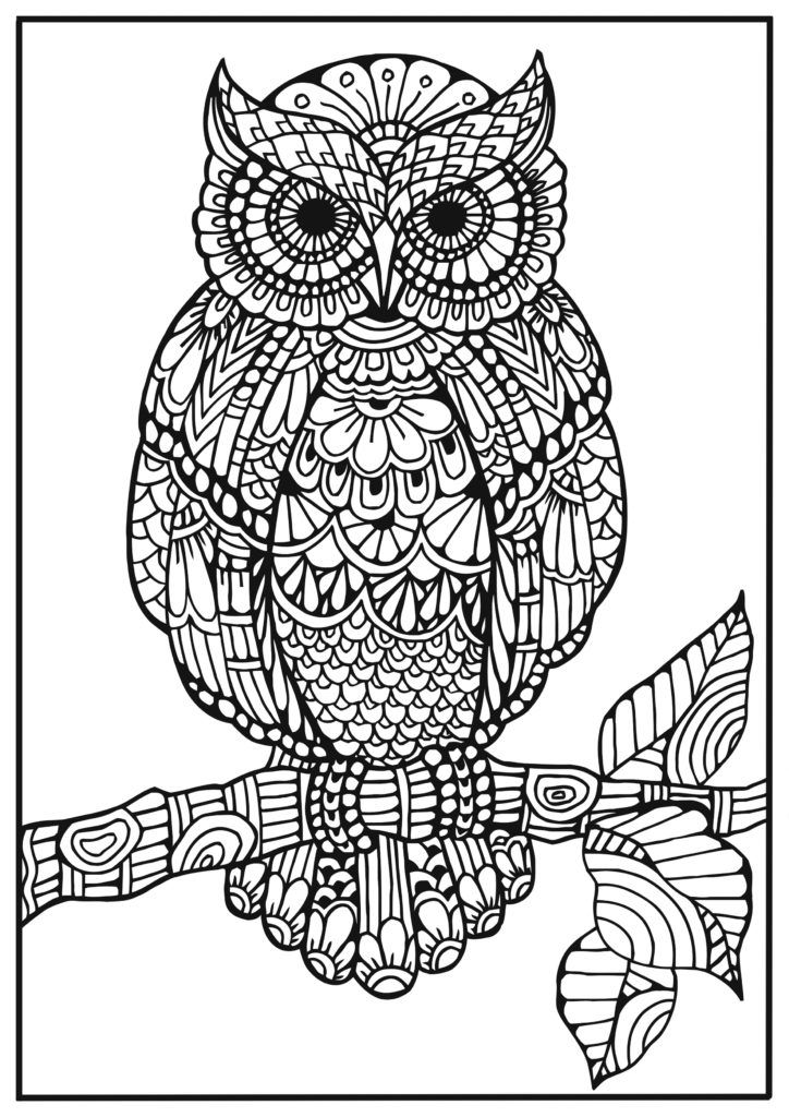 Bra clipart colouring.  best coloring pages