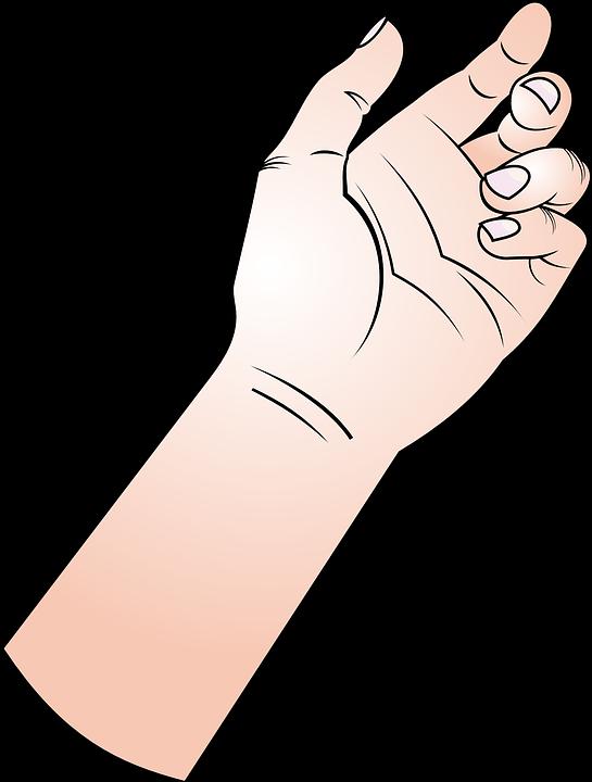 Cartoon cliparts shop of. Bra clipart forearm