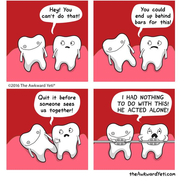 Braces clipart tooth cartoon.  best humor images