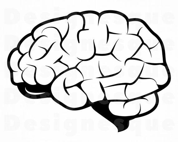 Brain clipart. Svg files for cricut