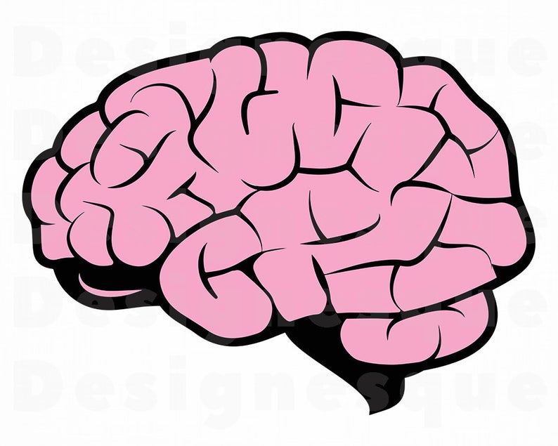 Svg mind files for. Brain clipart