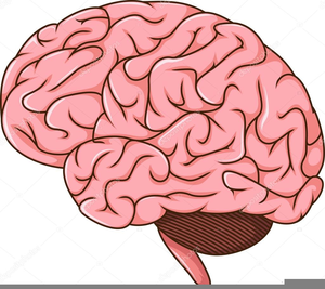 Brain clipart animated. Free images at clker